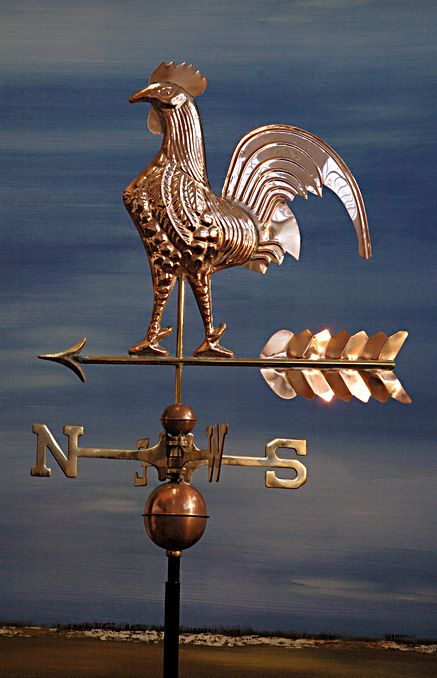 Polished_Rooster_50c675ac77c4c.jpg